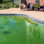 Why Did My Pool Turn Green?